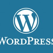 Wordpress-start-image[1]